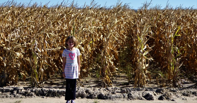 We Vacationed in Nebraska and Found More than Corn