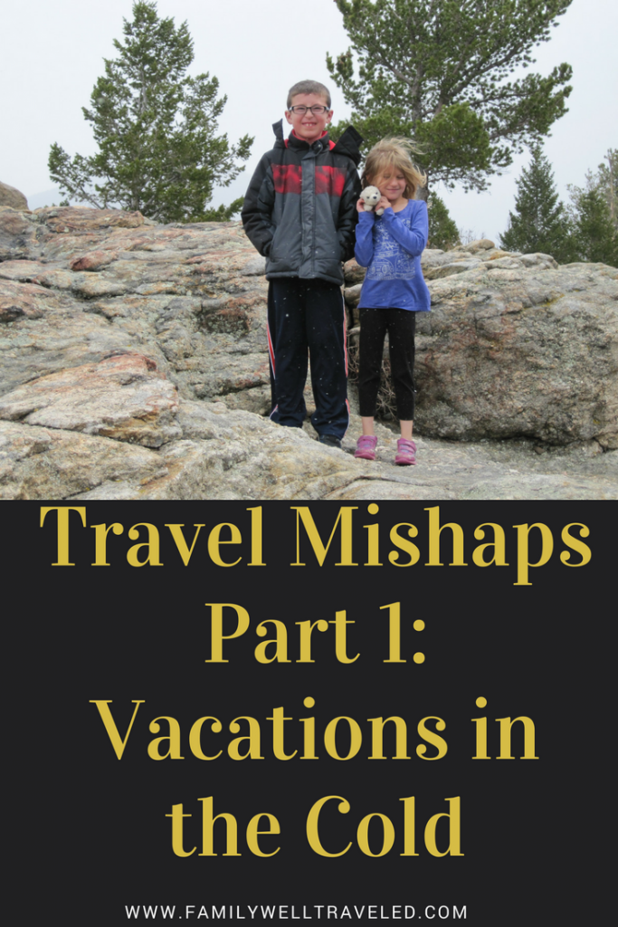 Travel Mishaps pin