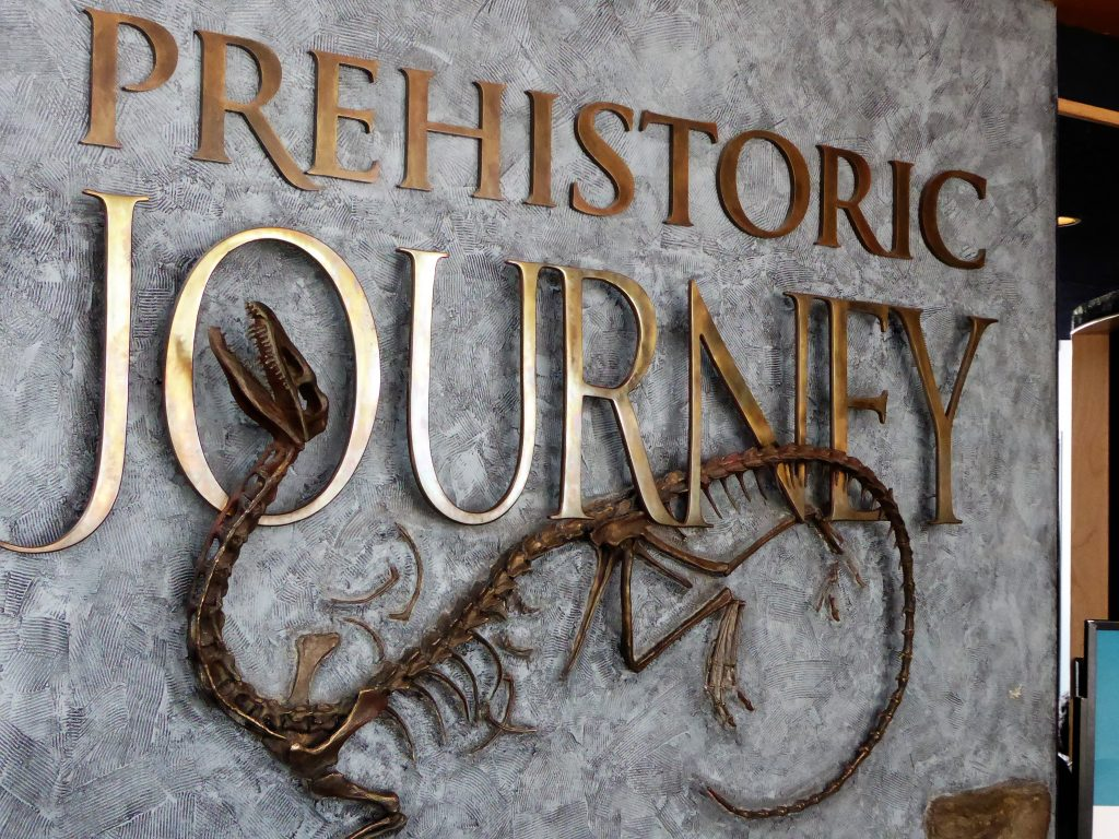 Denver Museum of Nature and Science Prehistoric Journey