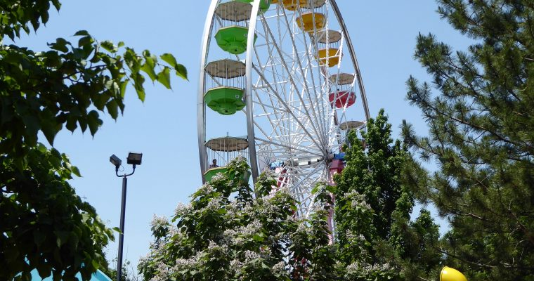 Your Ultimate Guide to Elitch Gardens Theme Park