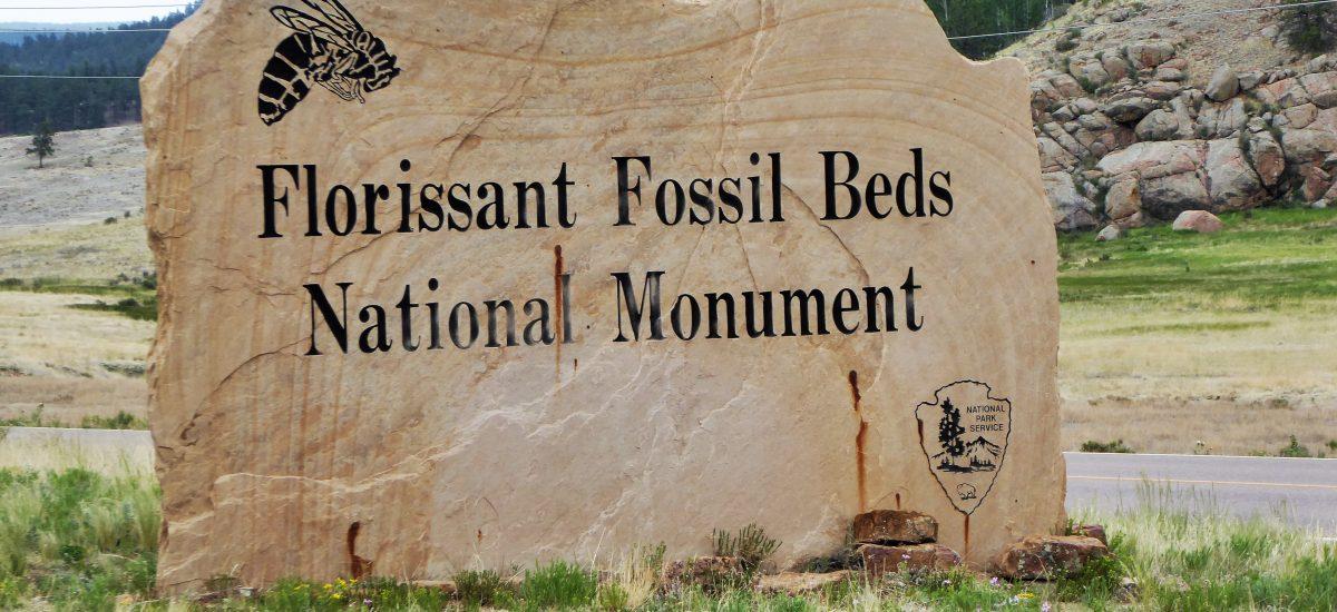 Even Walt Disney Visited Florissant Fossil Beds National Monument