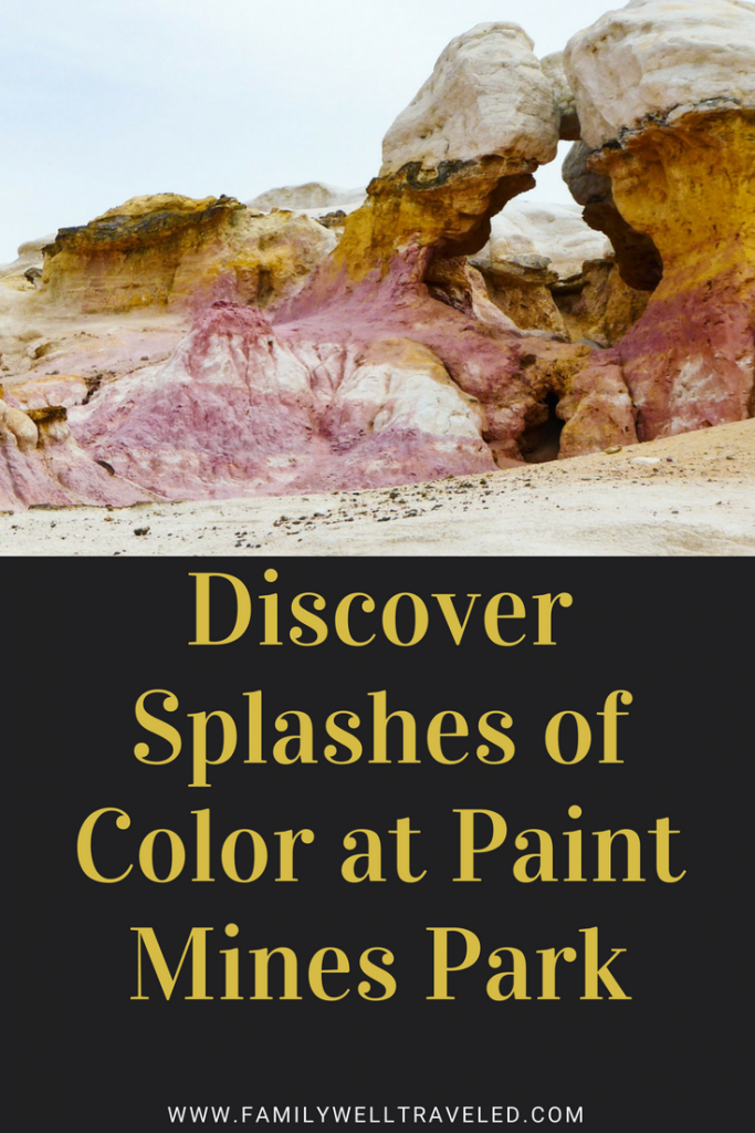 Paint Mines Interpretive Park Pin
