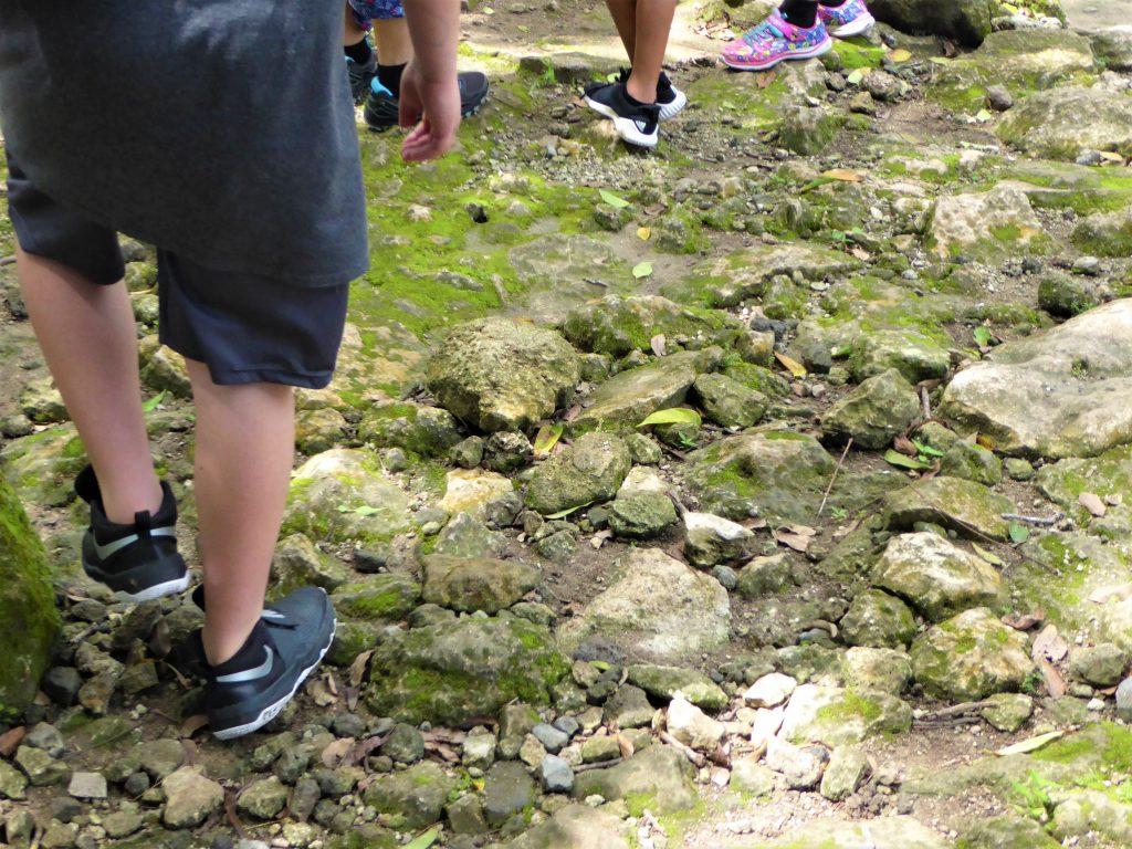 Mayan Ruins of San Gervasio Walking the White Road