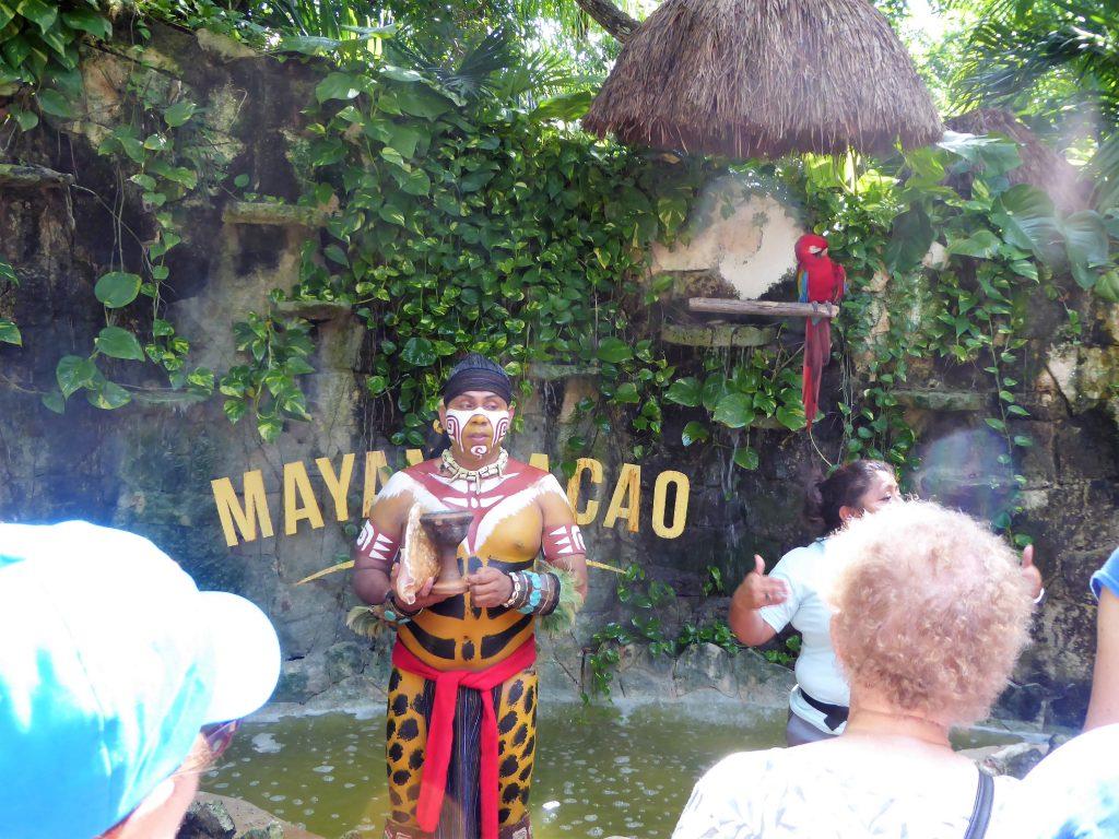 Mayan Cacao Company Maya and Macaw