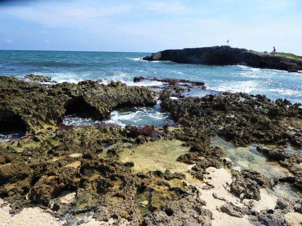 El Mirador Coral Blowholes