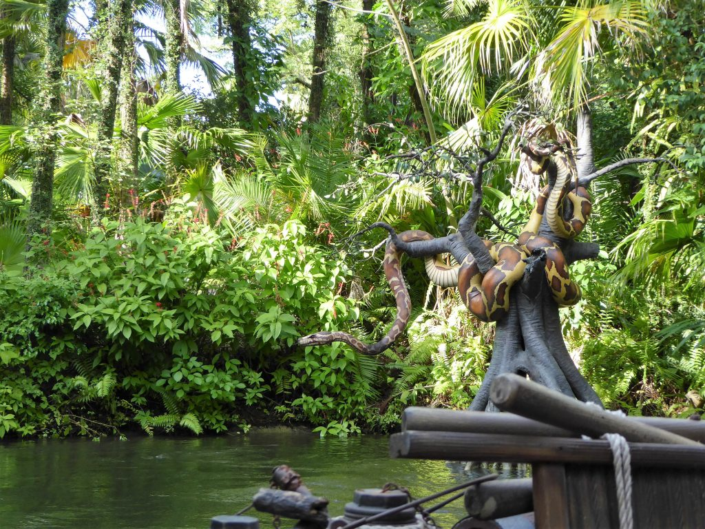 Magic Kingdom for Tweens Jungle Cruise