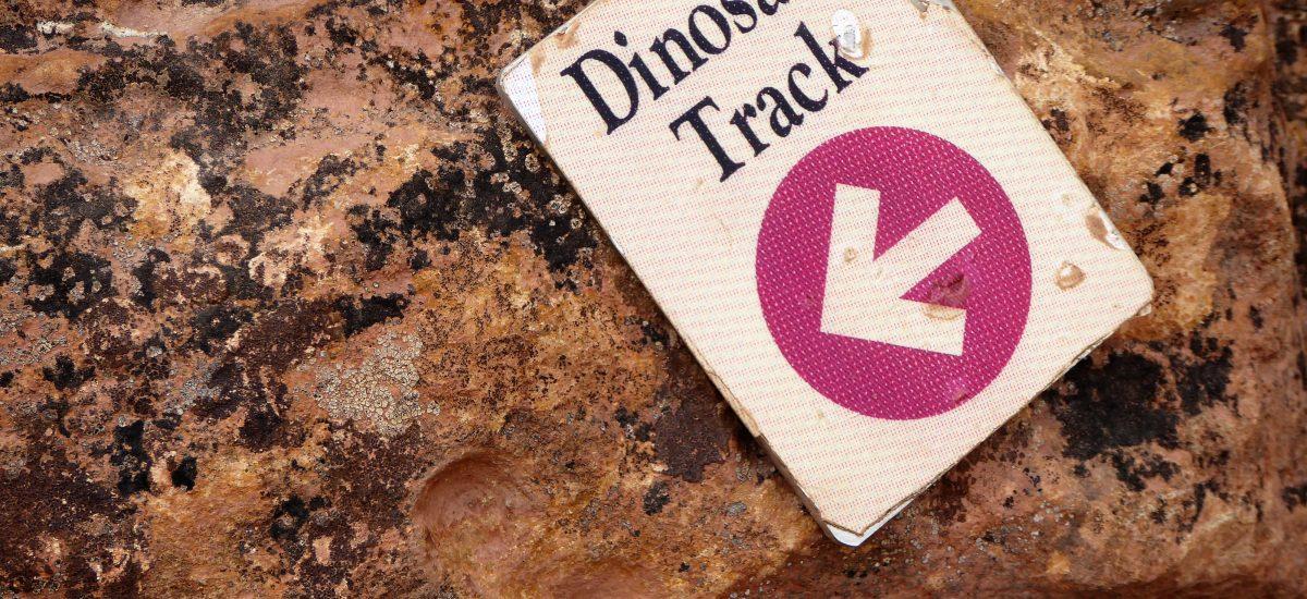Dinosaur Ridge: Walking in the Steps of Dinos in Colorado
