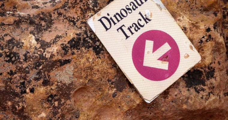Dinosaur Ridge: Walking in the Steps of Dinos in Colorado