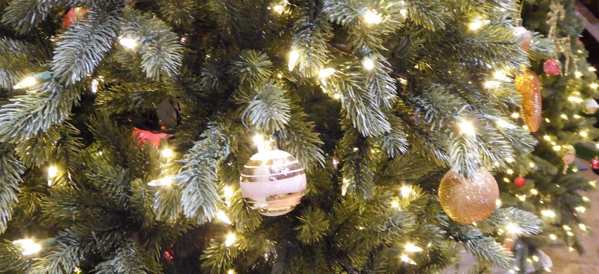 Christmas Festivities Around Colorado