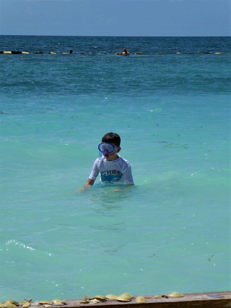 Starfish Island Belize Snorkel