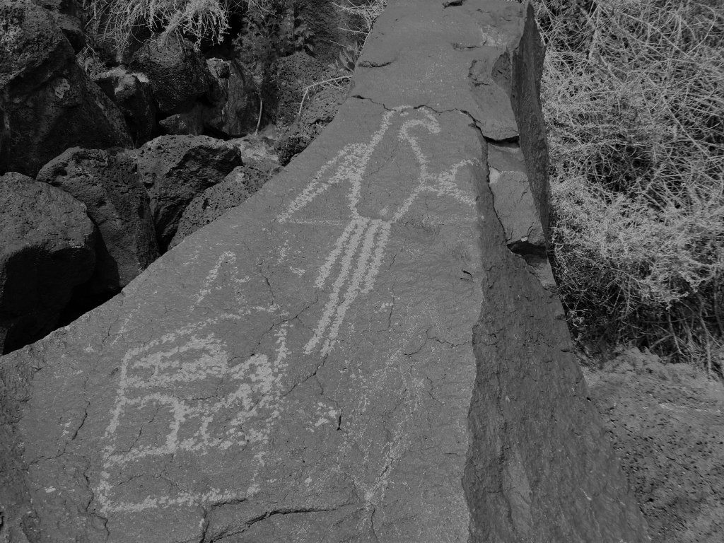 National Park photos Petroglyph