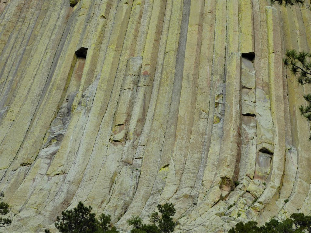 Columns at Devils Tower