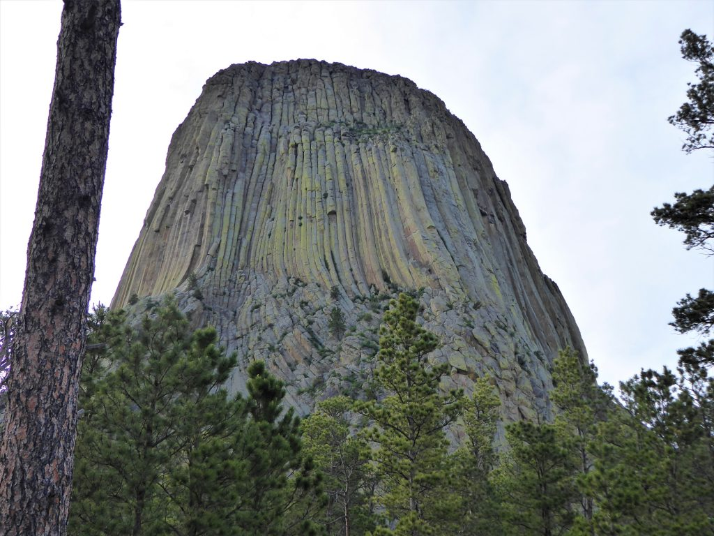 Devils Tower Trail View