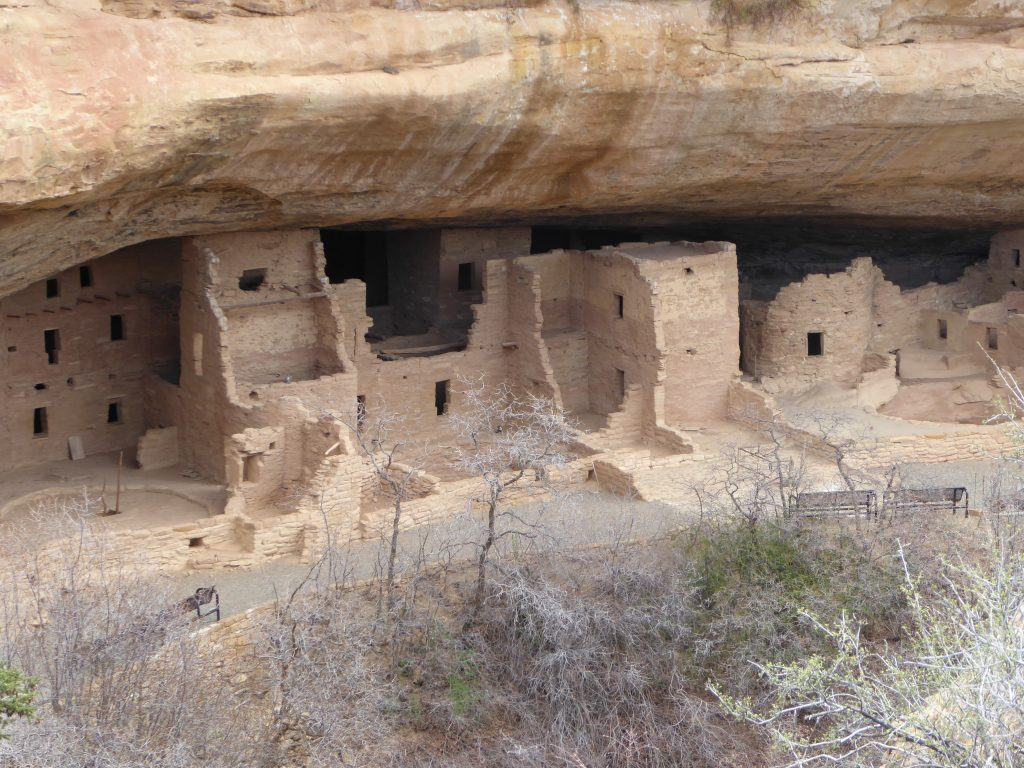 Cliff Dwellings Mesa Verde Spruce Tree House