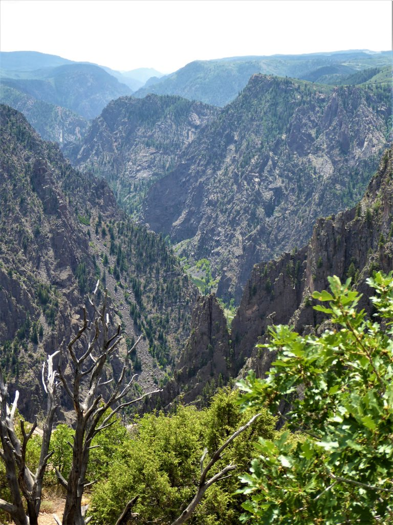 Black Canyon of the Gunnison Tomichi Point