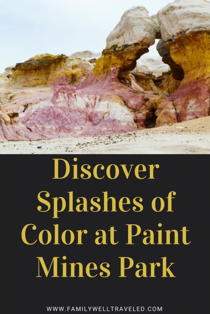 Paint Mines Interpretive Park Pin