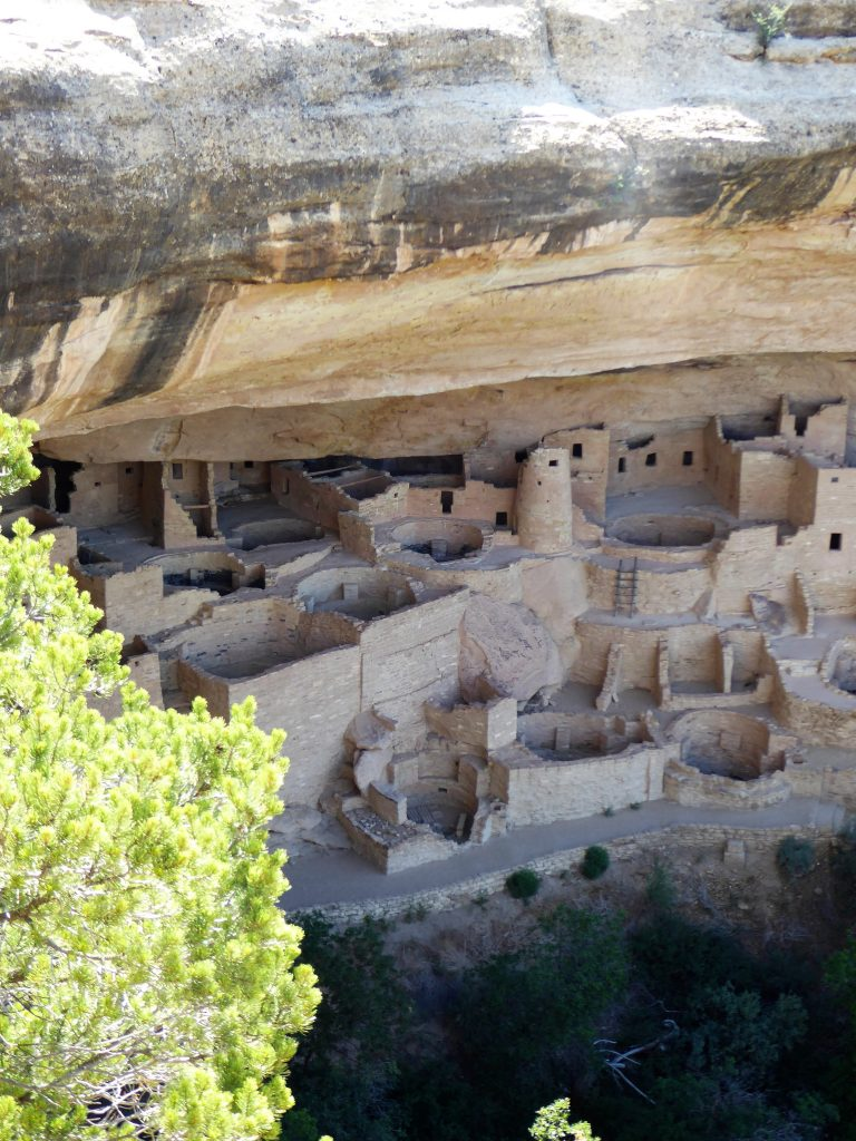 Ultimate Guide to the Cliff Palace Tour Look Down