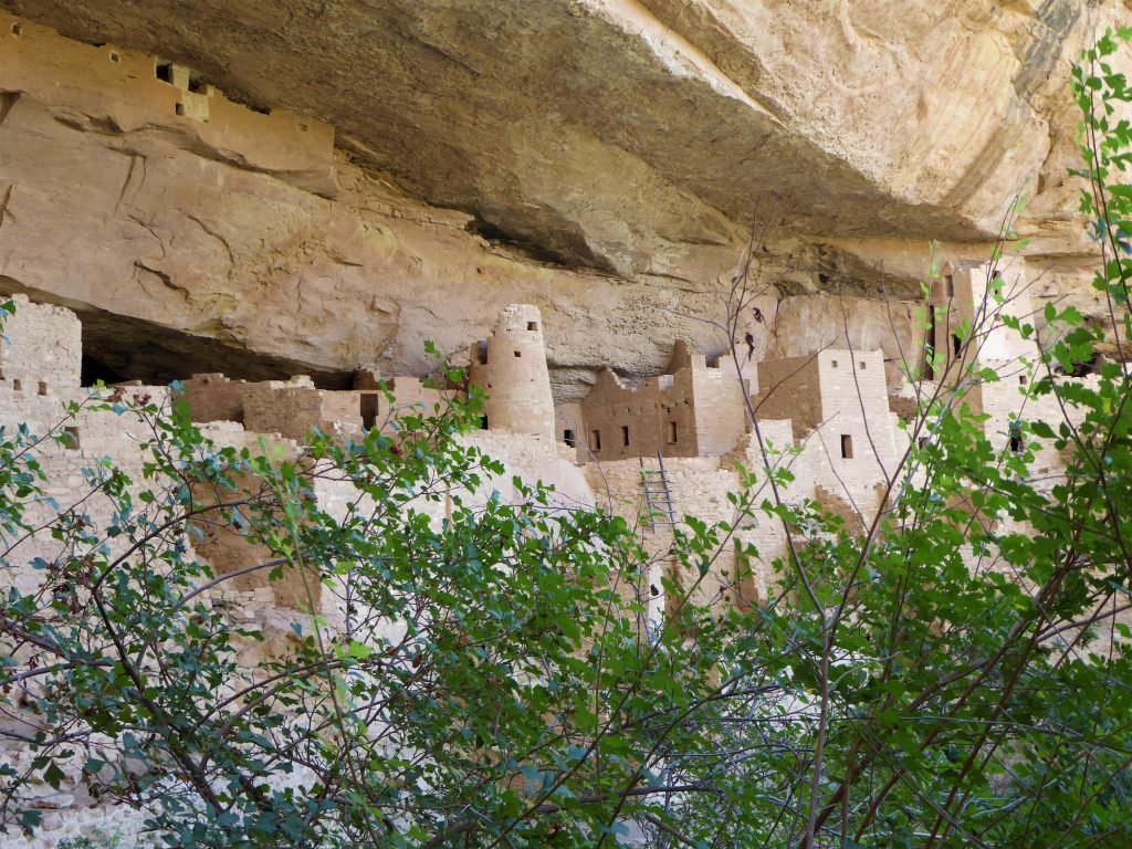 Ultimate Guide to the Cliff Palace Tour City