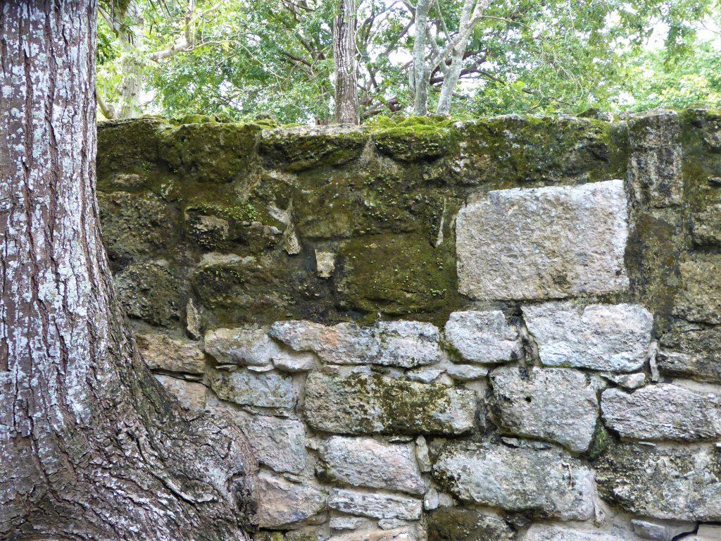 Mayan Ruins of San Gervasio Structures