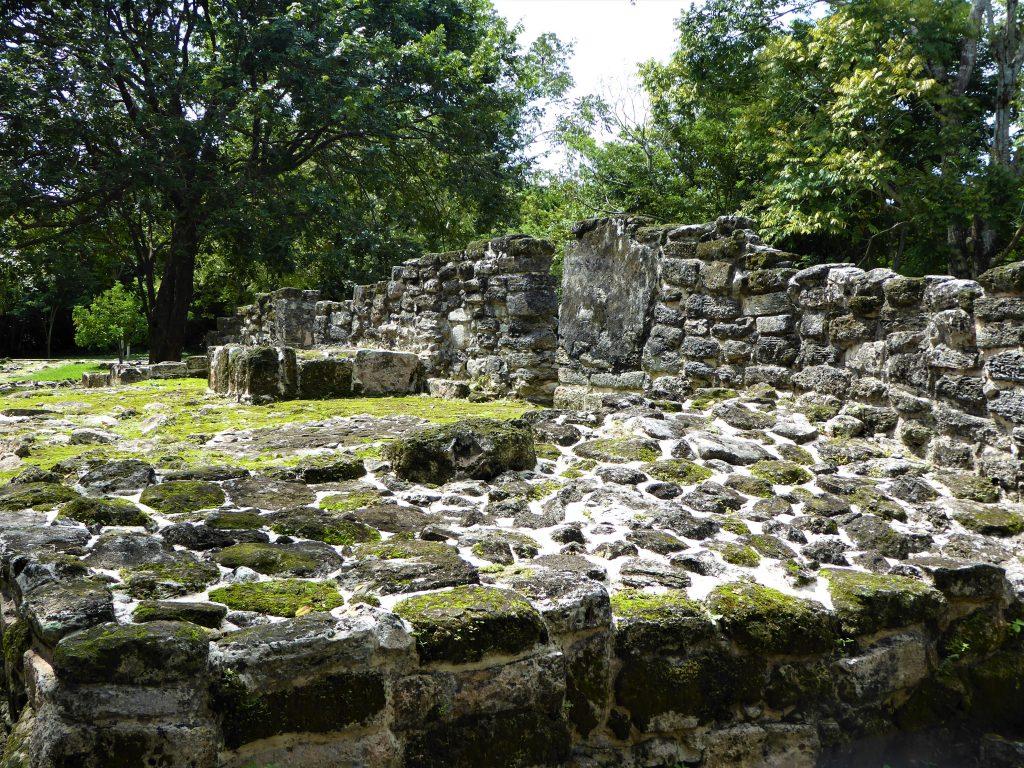 Mayan Ruins of San Gervasio Limestone