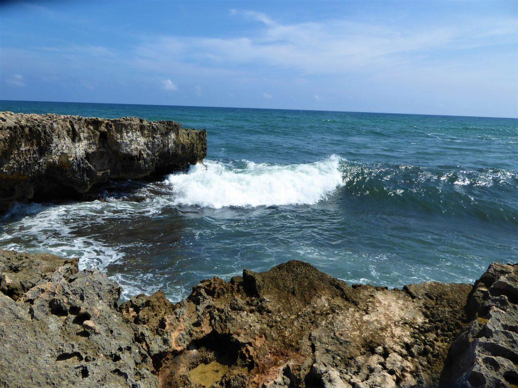 El Mirador Out to Sea