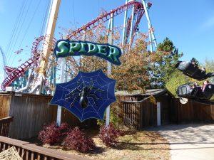 Elitch Gardens Theme Park Spider