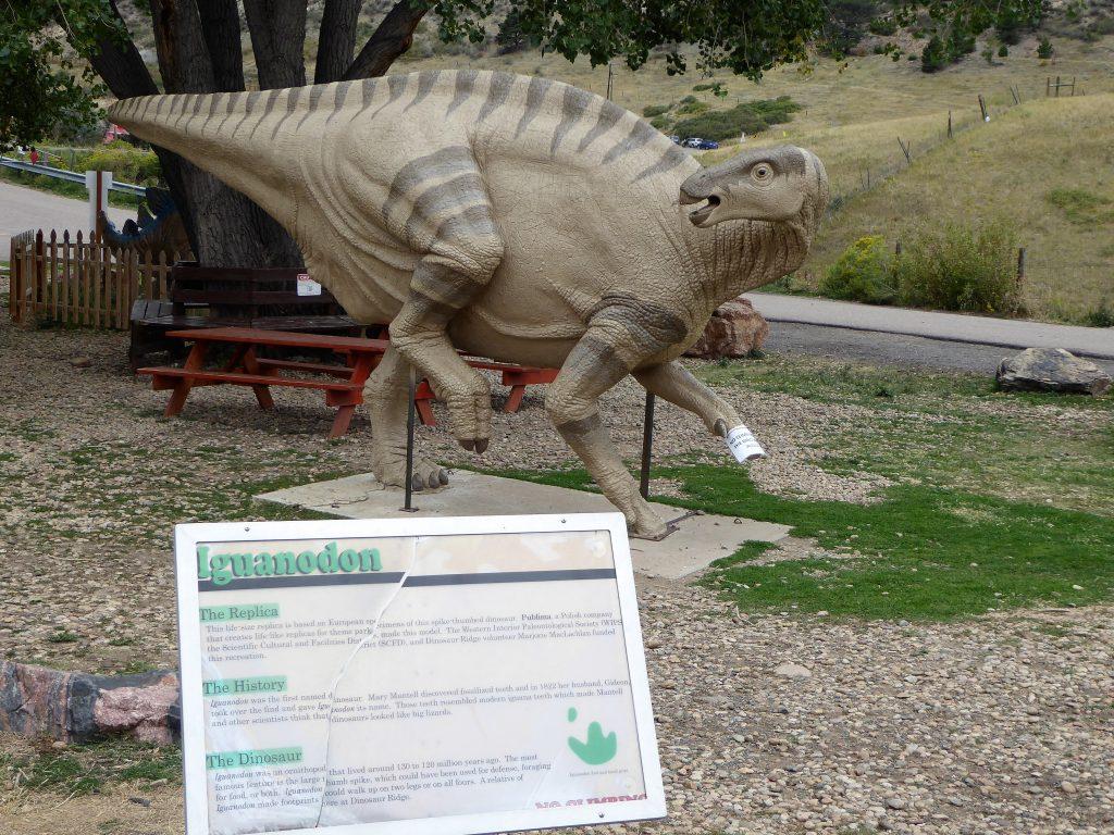 Dinosaur Ridge Iguaoadon