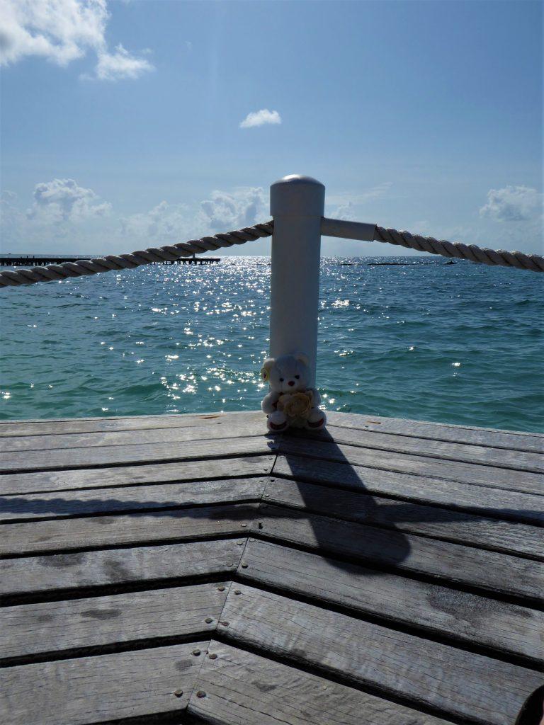 Starfish Island Belize Dock View