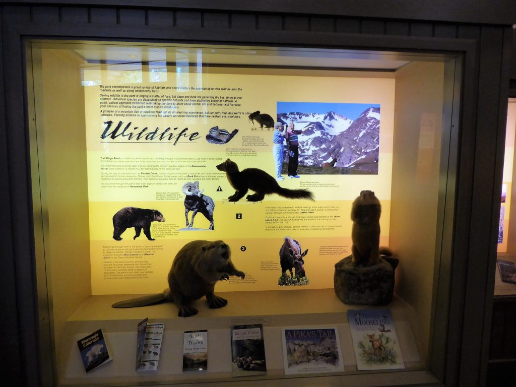 Rocky Mountain National Park Guide for Families Visitors Center