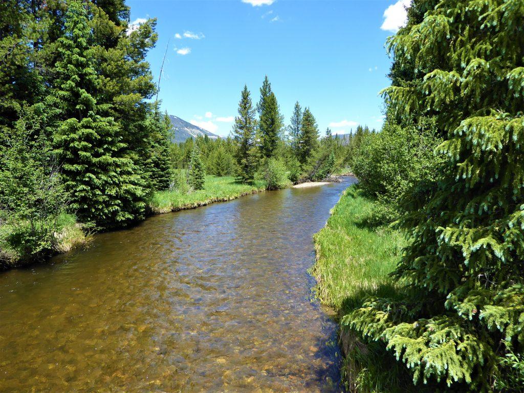 Colorado River RMNP