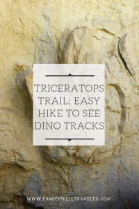 Triceratops Trail Hike in Golden, Colorado