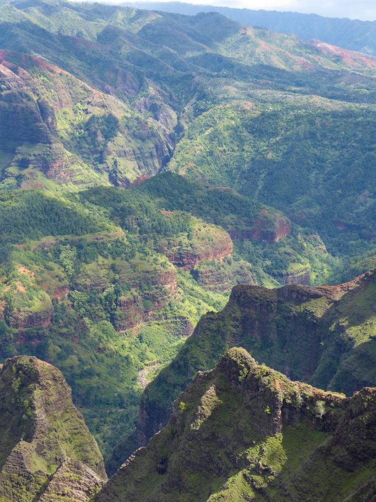 Waimea Canyon Family Activities on Kauai
