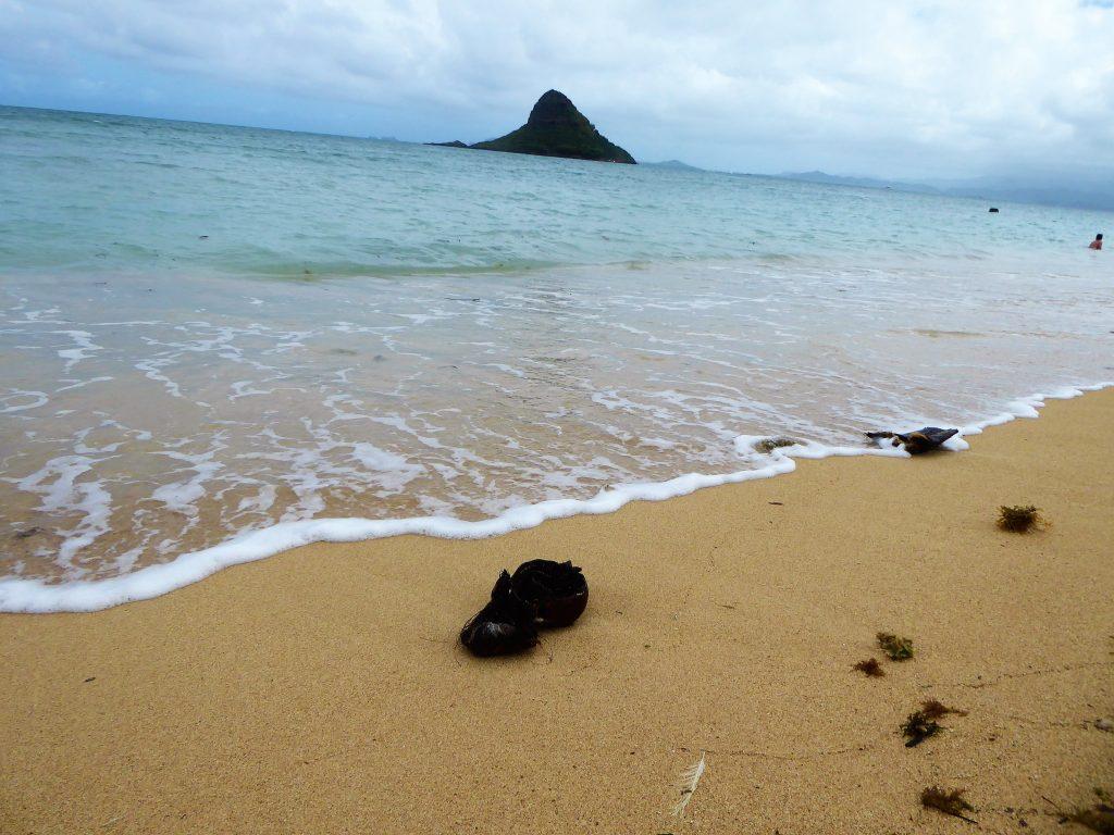 Kualoa Beach Park Oahu